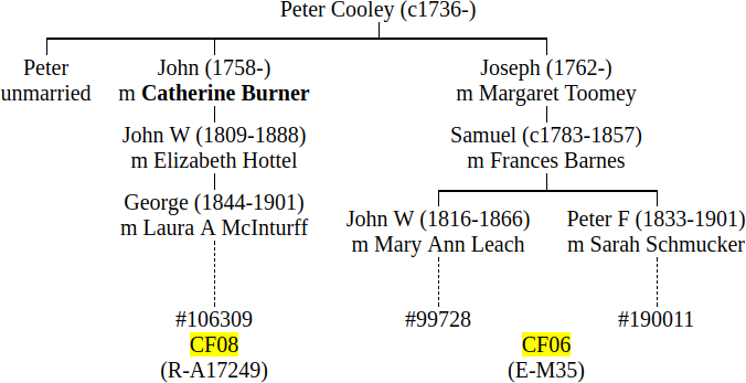Michael Cooleys Genetic Genealogy Blog
